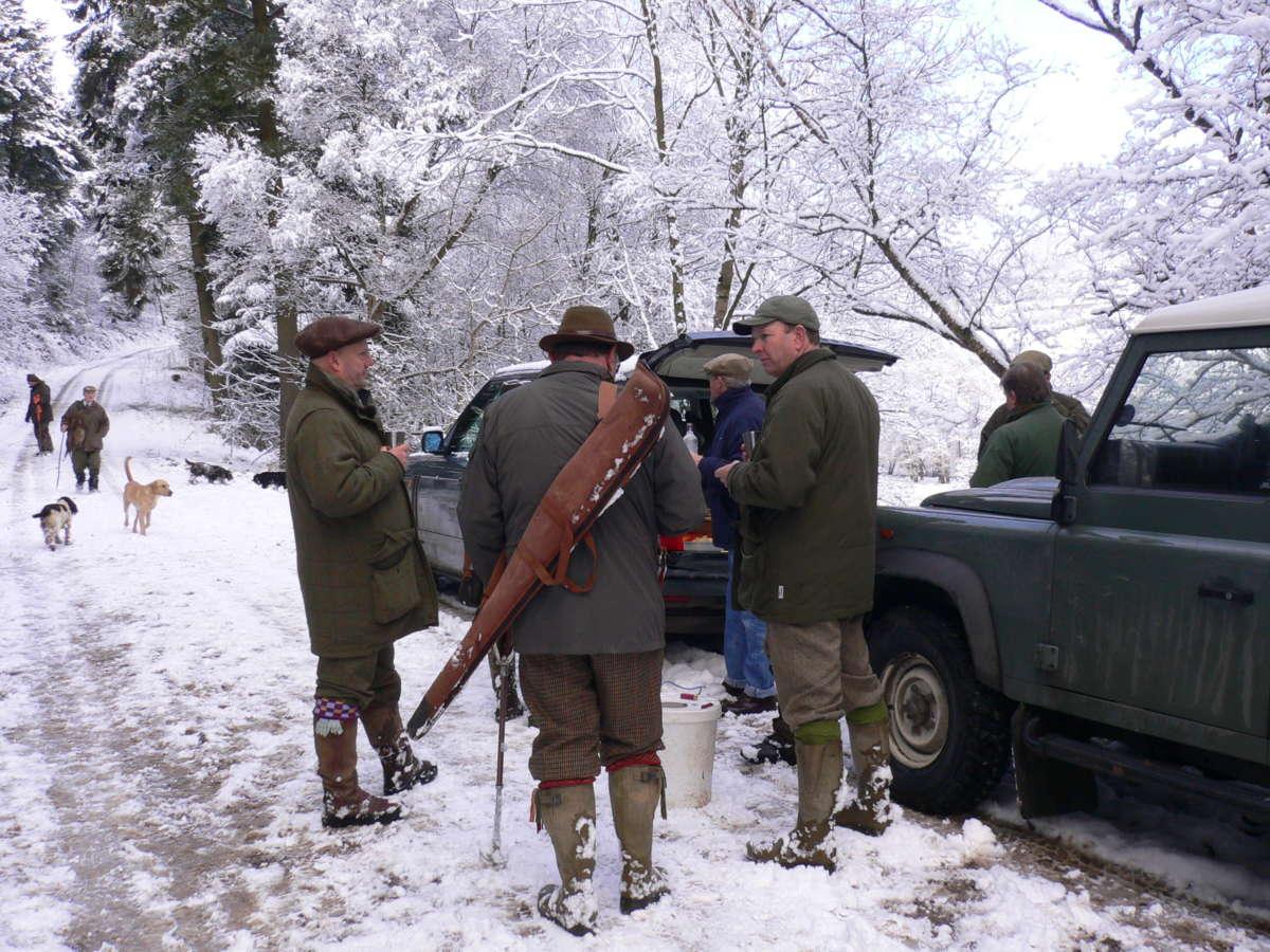 Wing shooting pheasant hunting